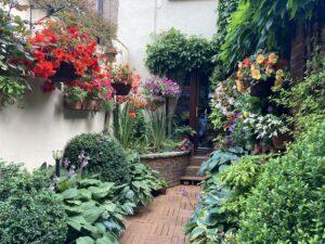 Image of hidden garden